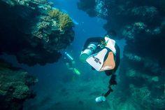 10 minutes underwater can make you forget it's #Monday wink emoticon #YachtcharterGriechenland #YachtcharterKykladen