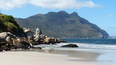 Cape Town South Africa, Table Mountain, Beach Tops, Old Pictures, National Geographic, Trip Advisor, The Good Place, Surfing, African