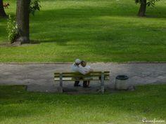 Photo by Caranfinwen - TRUE LOVE   #grandpa #grandma #senior #love #time #devout #marriage #happy #together #park #bench