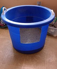 DIY kitty litter box....omg why did i never think of this?