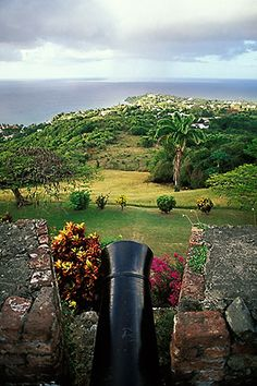 Tobago, Cannon, Scarborough Fort