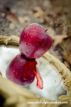 Snow White - Evil Queen inspired photoshoot | www.photosbyjessicalynn.com