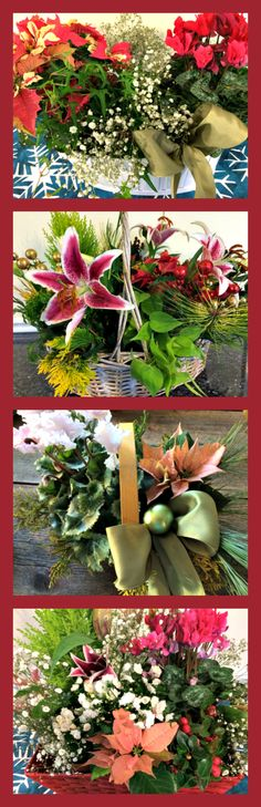 Making a last minute gift basket https://thegardendiaries.wordpress.com/2014/12/24/last-minute-gift-basket/
