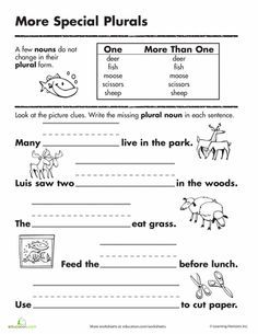 Worksheets: Irregular Plural Nouns
