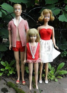 My Ken doll had dark brown hair.  I also had many Barbies and a Skipper doll.