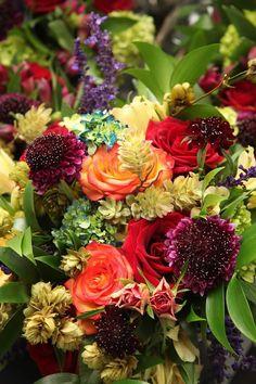 Floral Design, Plants, Floral Patterns, Plant, Planets