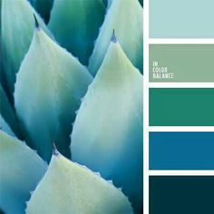 This palette is different fresh and cool. Sky-blue, cornflower blue, turquoise, blue - all shades of one color, but their combination does not look monoton Colour Pallette, Color Palate, Colour Schemes, Color Patterns, Color Combinations, Color Trends, Pantone, Color Cian, Photo Bleu