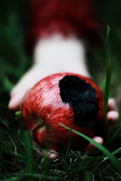 """As soon as she took a bite, the apple slowly started to turn black. Snow knew she had made a mistake."" --Written by Christy O. (Altered Snow White story)"