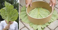 DIY kreatívny nápad s návodom ako si vyrobiť pomocou listov krásne dekoračné kamene na záhradný chodník. Chodníkové kamene, nášľapné, nášľapové, záhrada