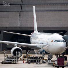 Sri Lankan A330 at the Gate✔️ - #bertazertyplanes#instagramaviation#globalaviationrepost#airbuslover15#combination_aviation#a330#mcdonelldouglas#boeing#airbus#ageek#flysrilankan#zrh#lszh#zurich#takeoff#landing#arrival#departure#airport#gva#fra#Switzerland#megaplane