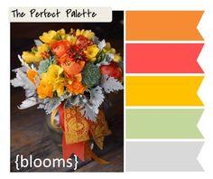 orange, coral, yellow, soft green, gray