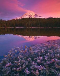 Reflection Lakes Fall Vertical (Beautiful Landscape Photos From Chip Phillips) Nature Pictures, Cool Pictures, Beautiful Pictures, Beautiful World, Beautiful Places, Gaia, Trillium Lake, Destinations, Into The West