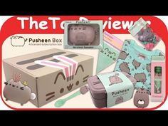 Spring 2017 Pusheen Subscription Box Let's Party Time Unboxing Toy Review by TheToyReviewer - YouTube