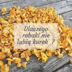 Herbal Remedies, Natural Remedies, Health And Nutrition, Health Fitness, Turmeric Health Benefits, Detox Recipes, Diy Crafts Videos, Natural Health, Herbalism