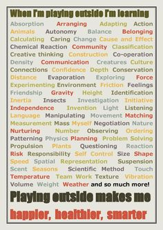 let the children play: When I Play Outside I Am Learning....