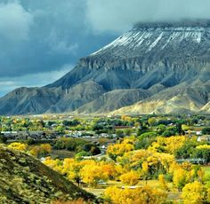 Grand junction Colorado