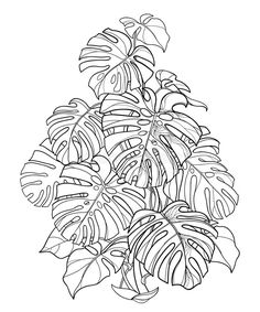 Outline Drawings, Art Drawings Sketches, Map Painting, Painting & Drawing, Plant Drawing, Bush Drawing, Plant Sketches, Plant Tattoo, Leaf Illustration