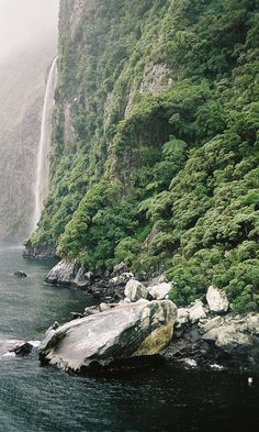 A rainy day on Milford Sound by Tracey Johns