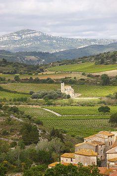 Les #Corbières, la plus grande #appellation du #Languedoc, la quatrième de France. www.audetourisme.com