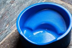 #TheLovingBowl was designed over-sized with a simple sloped modification into the bowl. Flat faced breeds instinctively use the sides of the bowl to help with grasping the morsels of food! #PetBowl #PetProduct