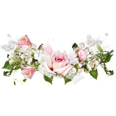 3a9b5cb2.png ❤ liked on Polyvore featuring flowers and roses