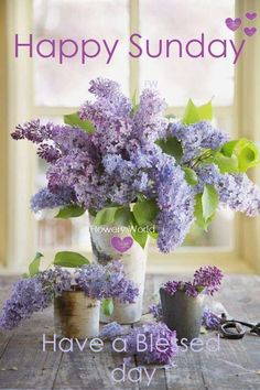 Facts Every Lilac Lover Should Know In the language of flowers, purple lilacs are the symbol of first love.In the language of flowers, purple lilacs are the symbol of first love. My Flower, Pretty Flowers, Flower Power, Lilac Flowers, Lilac Bouquet, Yellow Roses, Black Roses, Cactus Flower, Exotic Flowers
