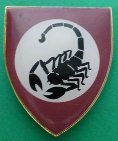 32 BATTALION SOUTH AFRICA SF COMMANDO SUPPORT COY SCORPION METAL ARM BADGE | eBay