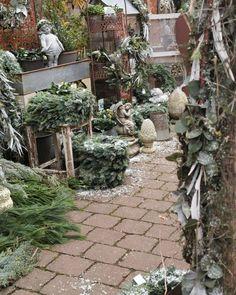 Ramona Christina Kohler (@timeundvision) • Instagram photos and videos Christmas Greenery, Photo And Video, Videos, Plants, Photos, Instagram, Pictures, Plant, Planets
