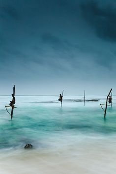 Fishermen catching small reef fish by sitting on small benches attached to poles which are stuck into the water a few meters offshore, known locally as stilt fishing Koggala, Galle, Sri Lanka