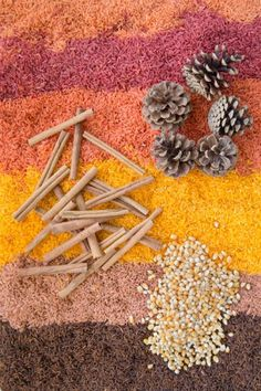 6 Tips to Make Colored Rice Perfect for Your Fall Sensory Bin - http://kidsactivitiesblog.com/47686/make-colored-rice-for-fall-sensory-bin