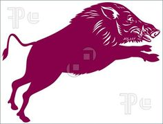 Wild Pig Boar Illustration. Royalty Free Vector at FeaturePics.
