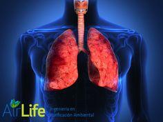 ¿Qué puede suceder en una atmosfera cargada de iones positivos? #airlife #aire