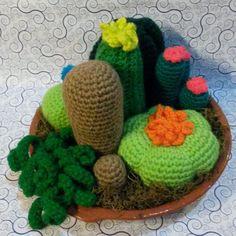 Cactus Y Deco Al Crochet - Amigurumis - $ 60,00 en MercadoLibre