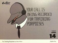 For Training Porpoises