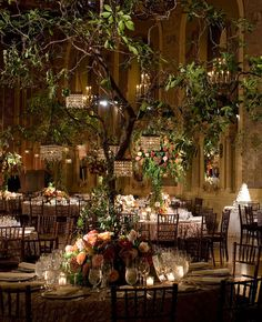 ~~ Indoor Garden Wedding - trees with mini chandeliers - Gorgeous idea!