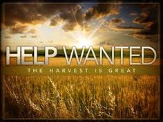 """""""Our Daily Bread""""  The Daily Devotions of Greg Laurie Written by Dave Boller for """"Working for Christ"""" @ View original@  HELP WANTED! Jesus went through all the towns and vill…"""