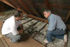 with This Old House general contractor Tom Silva | thisoldhouse.com | from How to Beef Up Attic Insulation