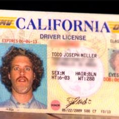 Oh TJ Miller. You are wonderful. The story behind this is HILARIOUS.