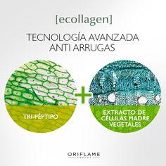 #NovAge Los productos de Ecollagen están basados en ciencia avanzada…