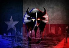 Go Houston Texans