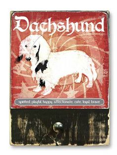 #DachshundLongHair  #ruckusdog #ruckusdogproducts