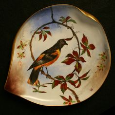 White House China of President Rutherford B. Hayes
