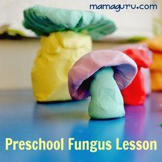 There's a Fungus Among Us: Preschool Mushroom Lesson