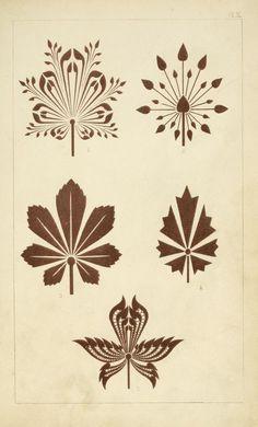 900 Designs Ideas In 2021 Zentangle Tutorial Design Zentangle Patterns