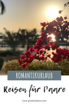 Von traumhaften Luxushotels bis zu ganz besonderen Hideaways. Wir zeigen euch, wo der Urlaub zu zweit besonders schön ist. Romantikurlaub, perfekt für Paare. Einsame Inseln, romantische Hotels und Resorts, die einfach zum Träumen einladen. Thailand, Indonesien, Dubai und viele weitere romantische Reiseziele warten darauf, von euch entdeckt zu werden. Mehr dazu auf www.gindeslebens.com #RomantikUrlaub #RomantischeHotels #Hideaways #Thailand #Bali #Sulawesi #Dubai #Paris Beste Hotels, Koh Tao, Places To See, Christmas Tree, Holiday Decor, Travel, Gin, Wanderlust, Amazing Places To Visit