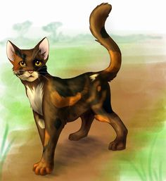 5#Spottedleaf Why:is a great medicine cat and was very sweet Death:killed by Clawface Spirit Death:killed by Mapleshade