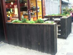 Raised beds, Zest cafe, London NW10