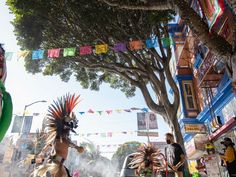 Video: 'Funeral' held for 24th Street ficus trees slated to be cut