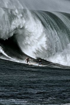 Would you do this? I'm... No... too much wave! Yikes!