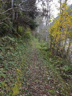 Inntalsteig Tösens - Pfunds, Tirol Country Roads, Tours, Biking, Hiking